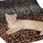 alfombra-slumber-pet-termica-700×420