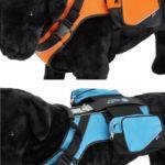 arnes-perro-crazy-paws-014-mismascotas