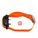 collar-cerco-x800-para-perros