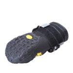 zapato-deportivo-negro-perro