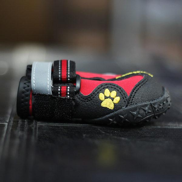 zapatos deportivos trecking perros