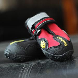 zapatos deportivos trecking perros marca pompreece