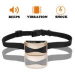 collar-petrain1